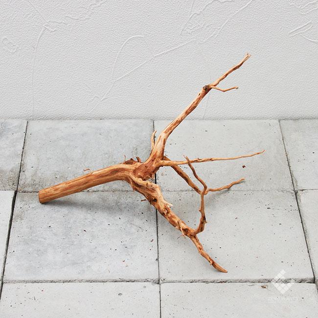 Drift Wood / ドリフトウッド 【 ブラウン / S / DW-018 】 [ パルダリウム、コケリウムのレイアウトに最適な流木 ]