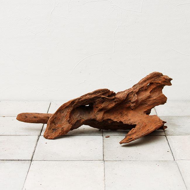 UWS Material Market / Sulawesi Wood 【 スラウェシウッド / 厳選流木 】 【 SW-2009-19 / M 】