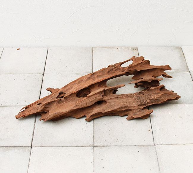 UWS Material Market / Sulawesi Wood 【 スラウェシウッド / 厳選流木 】 【 SW-2009-22 / ML 】