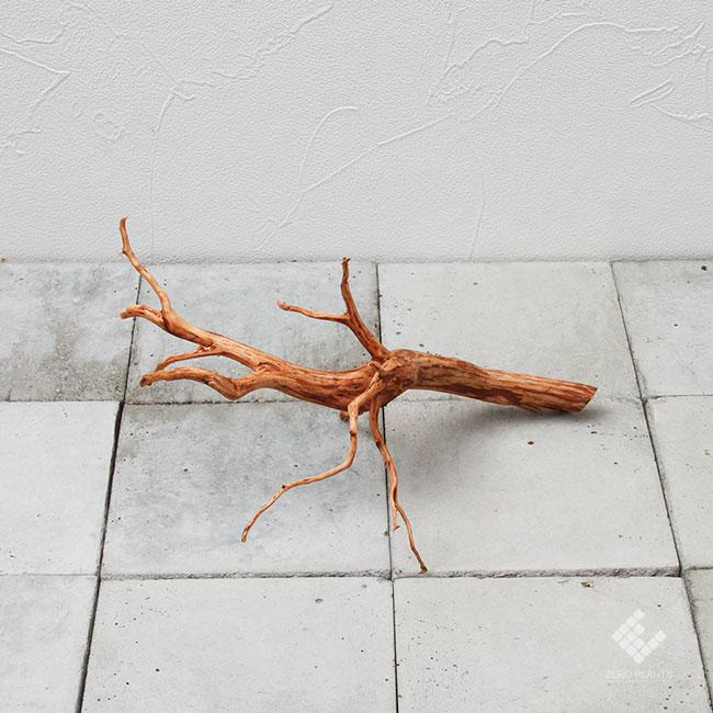 Drift Wood / ドリフトウッド 【 ブラウン / S / DW-025 】 [ パルダリウム、コケリウムのレイアウトに最適な流木 ]