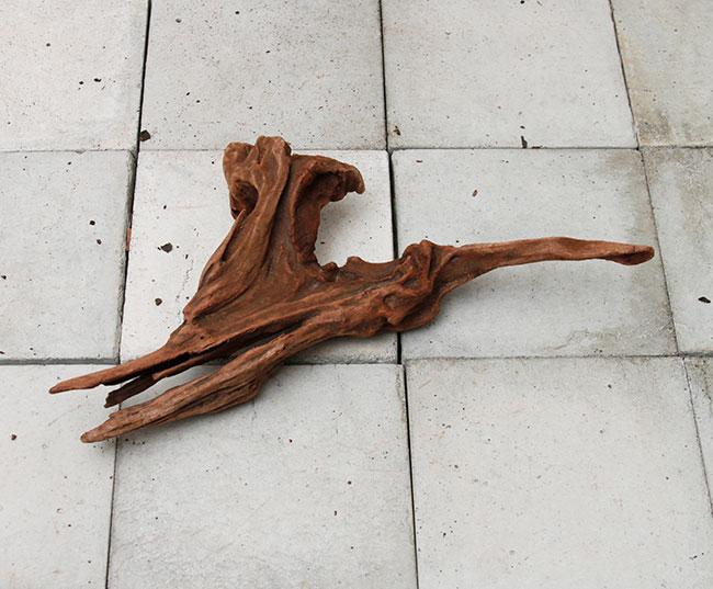 Drift Wood / ドリフトウッド 【 マングローブ / S  】 【 MG2102-28 】
