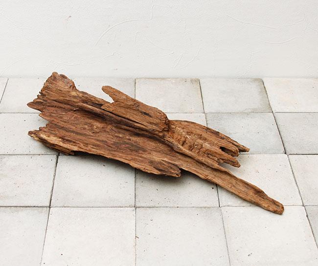 UWS Material Market / Sulawesi Wood 【 スラウェシウッド / 厳選流木 】 【 SW-2009-25 / LL 】