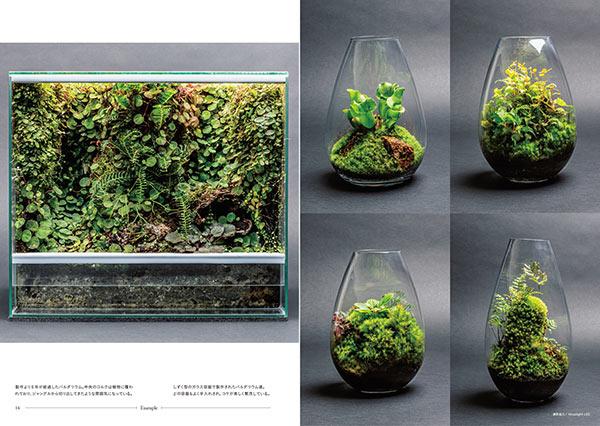 パルダリウム ハンドブック 大自然の景色を手本に作る、ガラスケースのジャングル