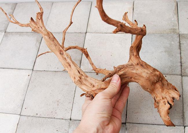 UWS Material Market / Sumatra Wood 【 スマトラウッド / 厳選流木 】 【 SM2107-21 】