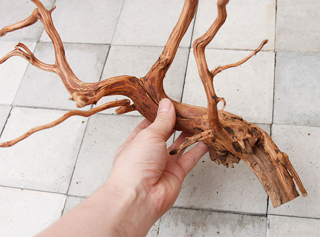 UWS Material Market / Sumatra Wood 【 スマトラウッド / 厳選流木 】 【 SM2107-22 】
