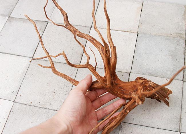 UWS Material Market / Sumatra Wood 【 スマトラウッド / 厳選流木 】 【 SM2107-24 】