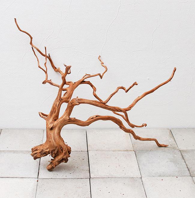 UWS Material Market / Sumatra Wood 【 スマトラウッド / 厳選流木 】 【 SM2107-27 】