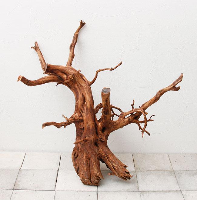 UWS Material Market / Elephant Wood 【 エレファントウッド / 厳選流木 】 【 SMW2102-01 】