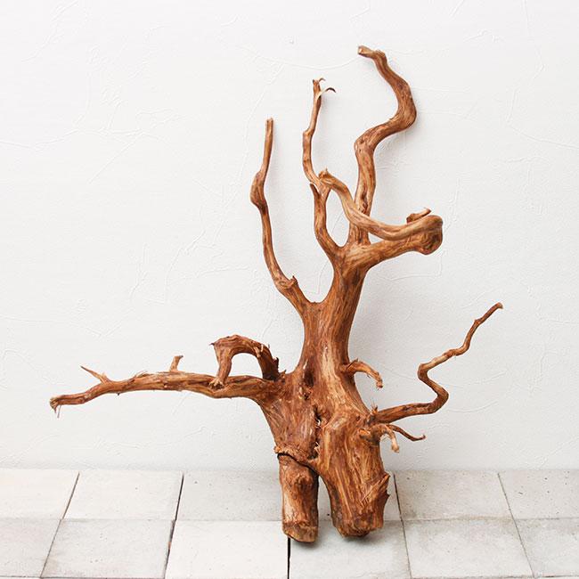 UWS Material Market / Elephant Wood 【 エレファントウッド / 厳選流木 】 【 SMW2102-02 】