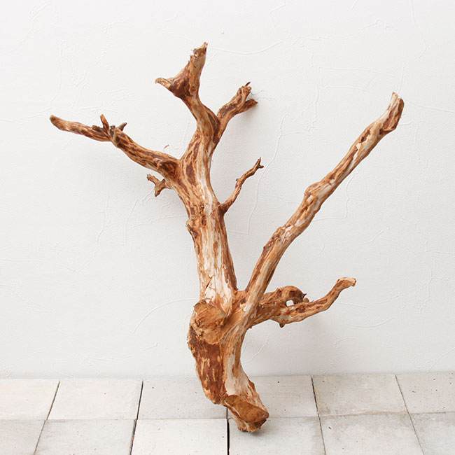 UWS Material Market / Elephant Wood 【 エレファントウッド / 厳選流木 】 【 SMW2102-05 】
