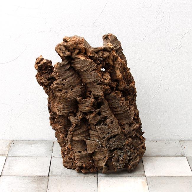 Cork / コルク  【 BC0068 】【 最大長:約38cm 】