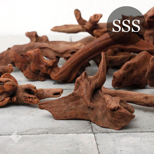 Drift Wood / ドリフトウッド 【 マングローブ / SSS / 3本 】 [ パルダリウム、コケリウムのレイアウトに最適な流木 ]