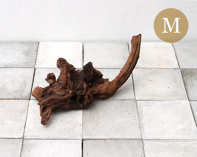 Drift Wood / ドリフトウッド 【 マングローブ / M  】 【 MG0018 】