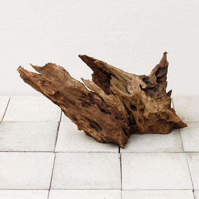 UWS Material Market / Sulawesi Wood 【 スラウェシウッド / 厳選流木 】 【 SWW2102-14 】
