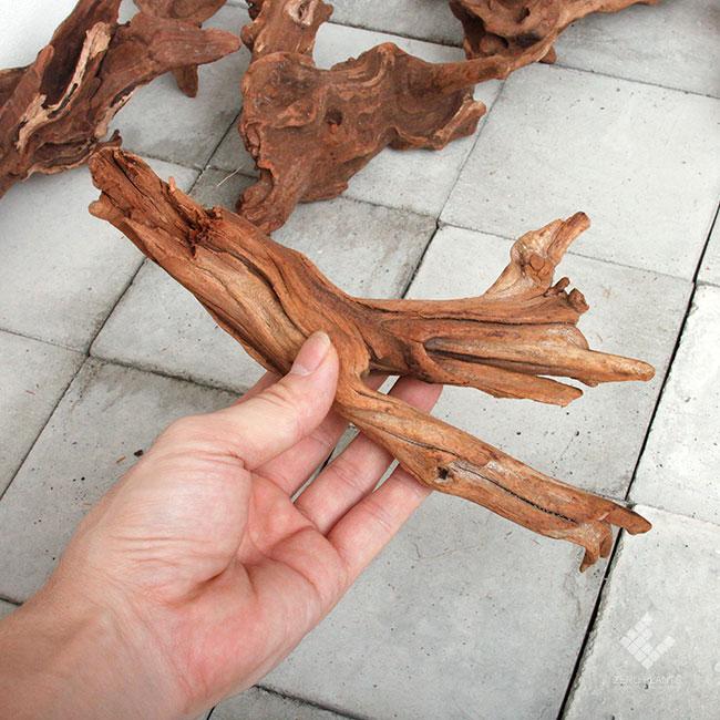 Drift Wood / ドリフトウッド 【 マングローブ / S / Aタイプ(枝) / 1本 】 [ パルダリウム、コケリウムのレイアウトに最適な流木 ]