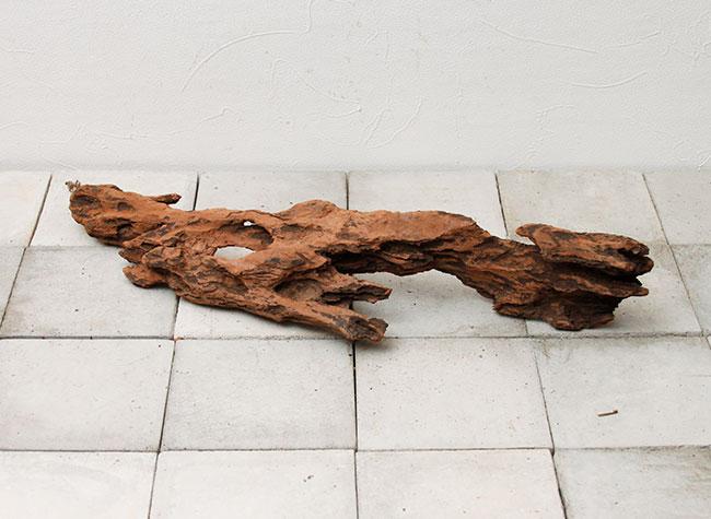 UWS Material Market / Sulawesi Wood 【 スラウェシウッド / 厳選流木 】 【 SWW2102-15 】