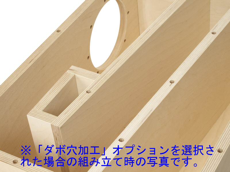 【限定】Z701-FE168SSHP